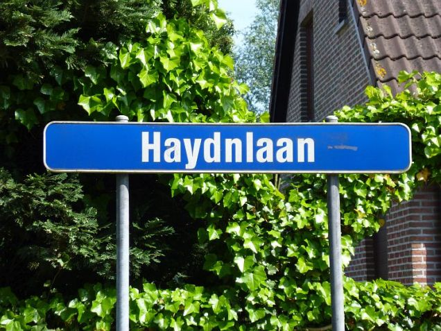 Haydnlaan